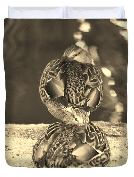 Hen Mallard Ducks Duvet Cover by Donna Greene