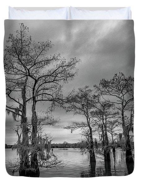Henderson Swamp Wetplate Duvet Cover