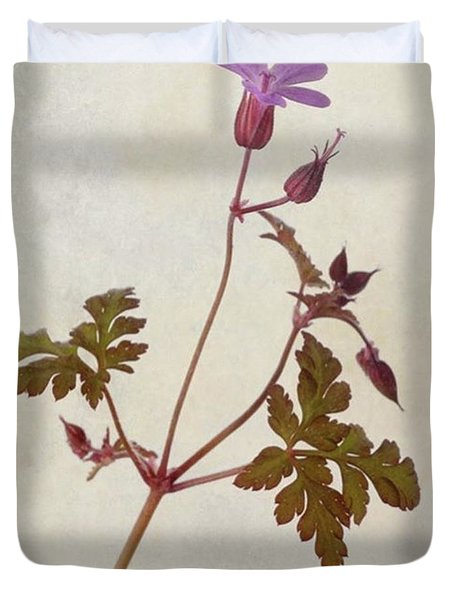 Herb Robert - Wild Geranium  #flower Duvet Cover by John Edwards