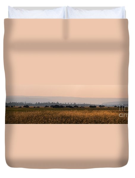 Herd Of Bison Grazing Panorama Duvet Cover