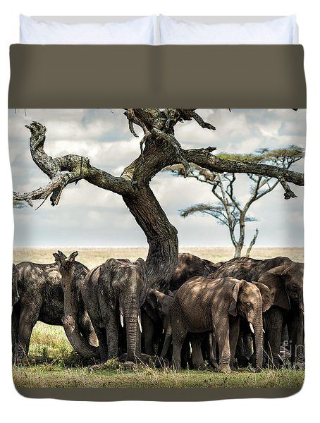 Herd Of Elephants Under A Tree In Serengeti Duvet Cover