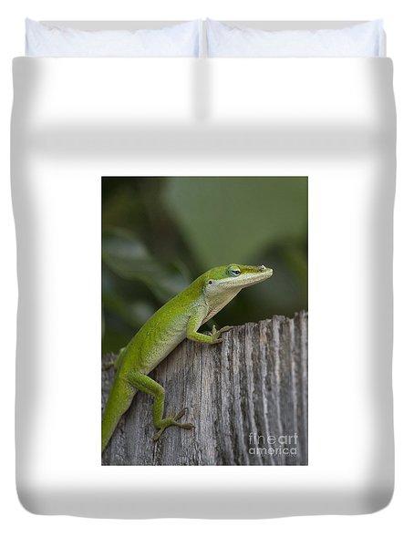 Here Lizard Lizard Lizard Duvet Cover by D Wallace