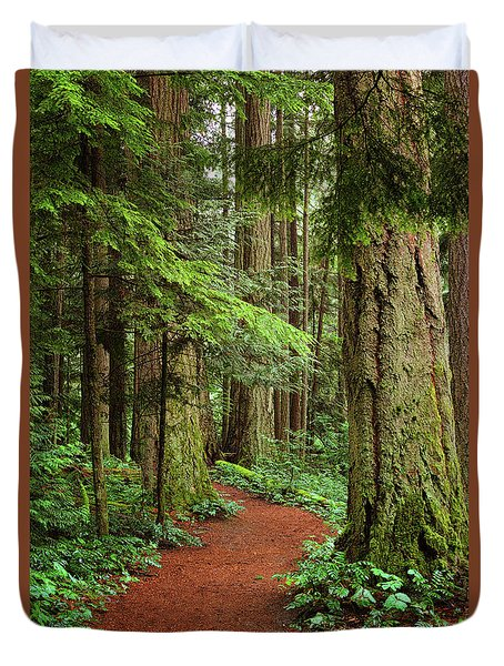 Heritage Forest 2 Duvet Cover by Randy Hall