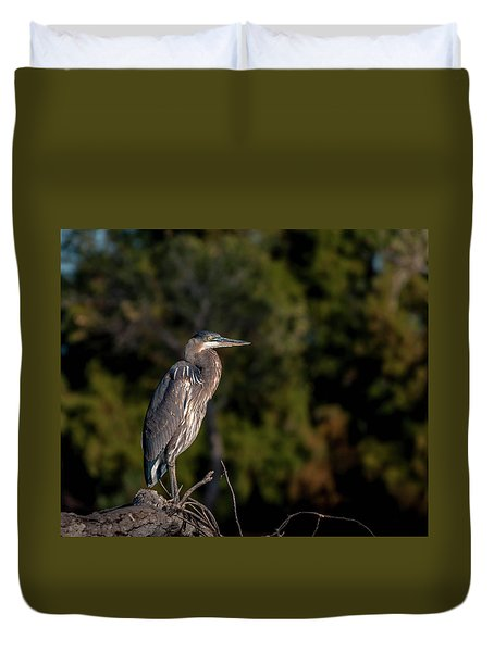 Heron At Sunrise Duvet Cover by Martina Thompson