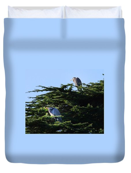 Heron Family At Rest Duvet Cover