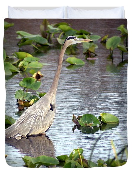 Heron Fishing In The Everglades Duvet Cover by Marty Koch
