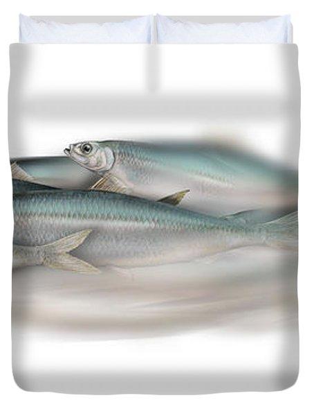 Herring School Of Fish - Clupea - Nautical Art - Seafood Art - Marine Art - Game Fish Duvet Cover