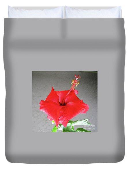 Hibiscus #1 Duvet Cover