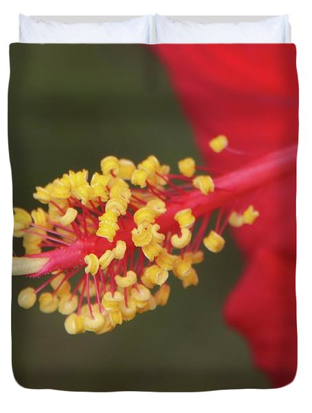 Hibiscus Bloom Duvet Cover by Richard Rizzo
