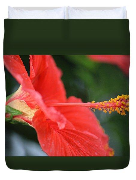 Hibiscus Closeup Duvet Cover