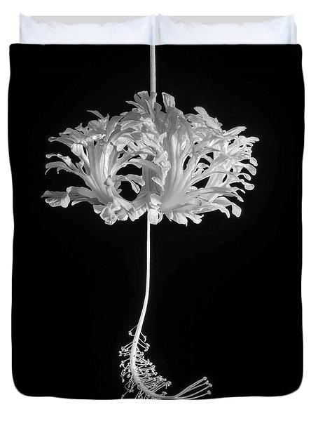 Hibiscus Schizopetalus Against A Black Background In Black And White Duvet Cover