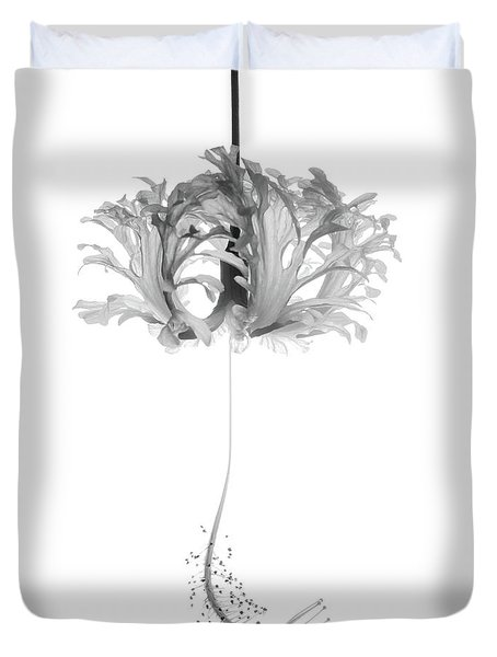 Hibiscus Schizopetalus Against A White Background In Black And White Duvet Cover