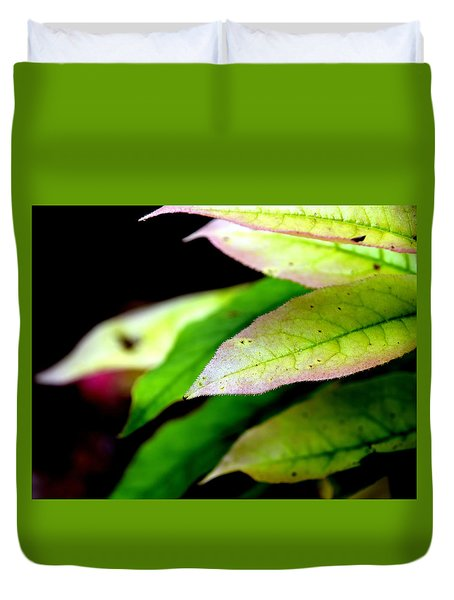 Hickory Leaf Duvet Cover