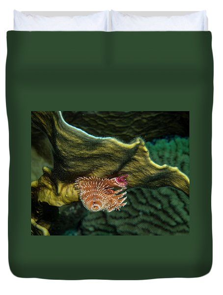 Duvet Cover featuring the photograph Hidden Christmastree Worm by Jean Noren