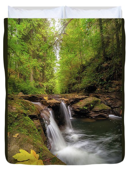 Hidden Falls At Rock Creek Duvet Cover by David Gn