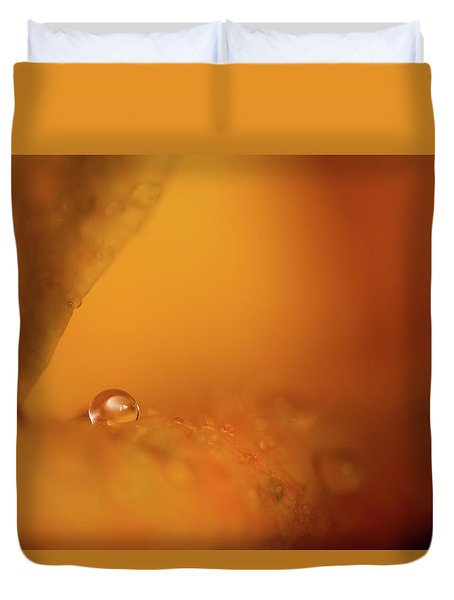 Hidden Treasure Duvet Cover