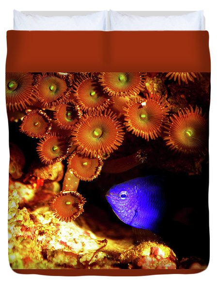 Duvet Cover featuring the photograph Hiding Damsel by Anthony Jones