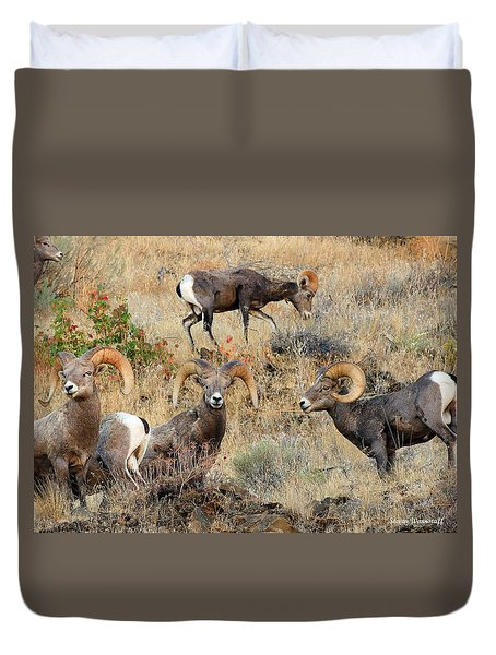 Hierarchy Duvet Cover by Steve Warnstaff