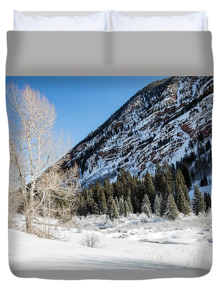 High In The Rockies Before Independence Pass Duvet Cover by Carol M Highsmith