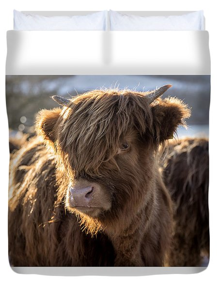 Highland Baby Coo Duvet Cover