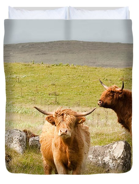 Highland Cattle Duvet Cover by Colette Panaioti