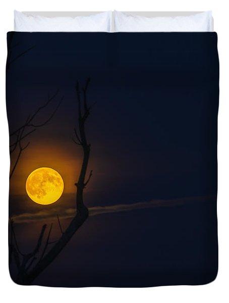 Highland Moon  Duvet Cover