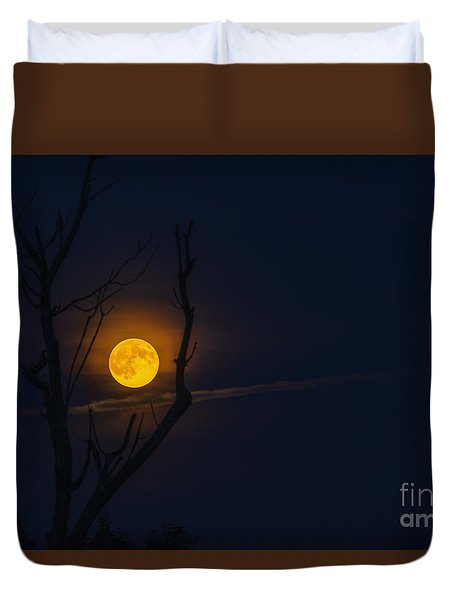 Highland Moon  Duvet Cover by Thomas R Fletcher