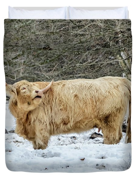 Highlander In Winter Duvet Cover