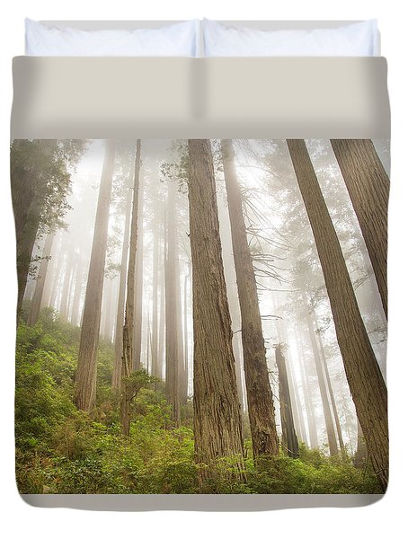 Hike Through The Redwoods Duvet Cover