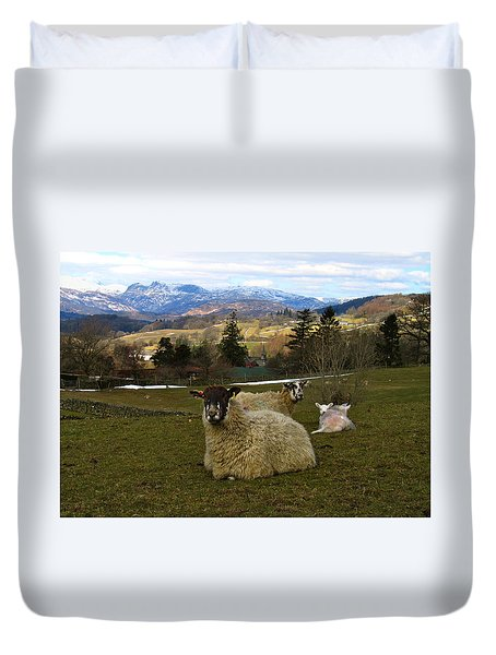 Hill Sheep Duvet Cover