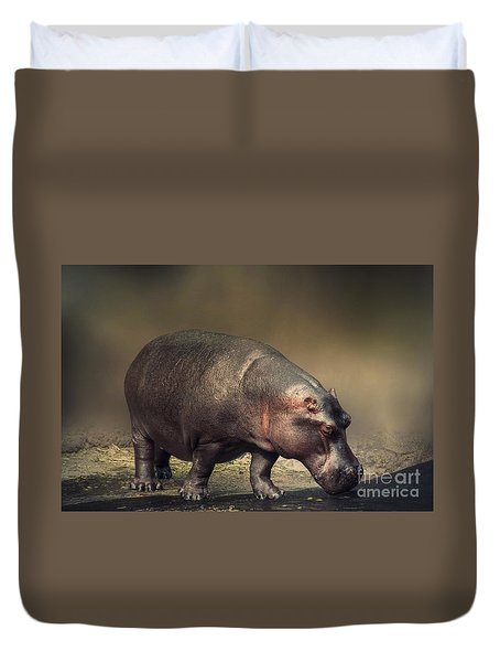 Duvet Cover featuring the photograph Hippo by Charuhas Images