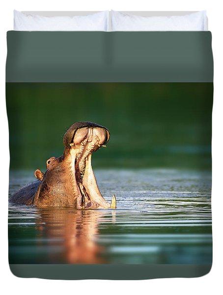 Hippopotamus Duvet Cover by Johan Swanepoel
