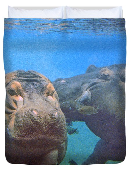Hippos In Love Duvet Cover