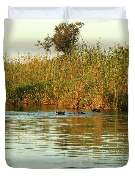 Duvet Cover featuring the photograph Hippos, South Africa by Karen Zuk Rosenblatt