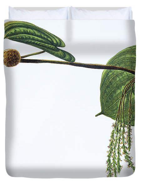 Hoi Duvet Cover by Hawaiian Legacy Archive - Printscapes