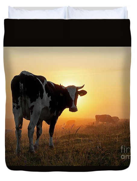 Holstein Friesian Cow Duvet Cover
