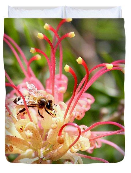 Honey Bee On Grevillea  Duvet Cover