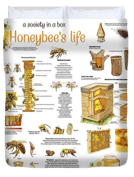 Honey Bees Infographic Duvet Cover