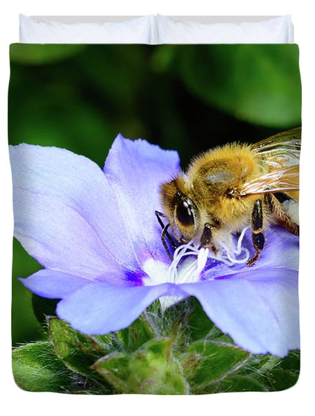 Honeybee Blue Pastel Duvet Cover