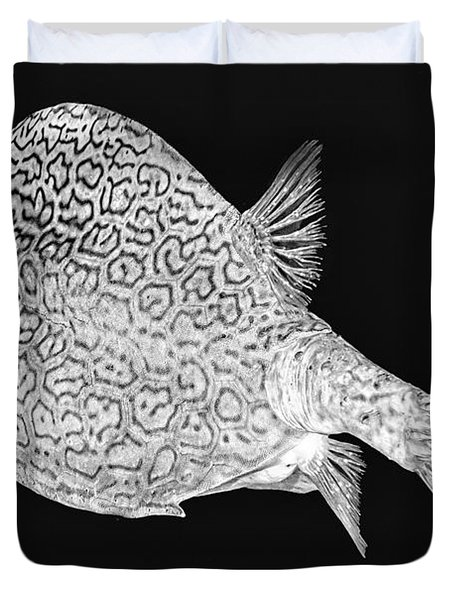Honeycomb Cowfish Duvet Cover
