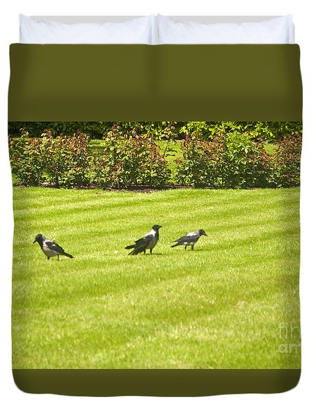 Hooded Crows Ireland Duvet Cover