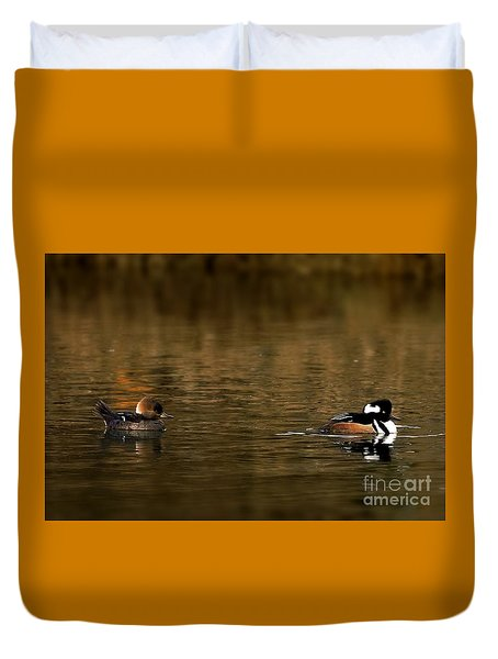 Hooded Mergansers Duvet Cover