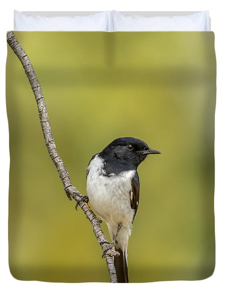 Hooded Robin Duvet Cover
