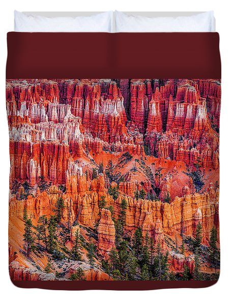 Hoodoo Forest Duvet Cover by David Cote