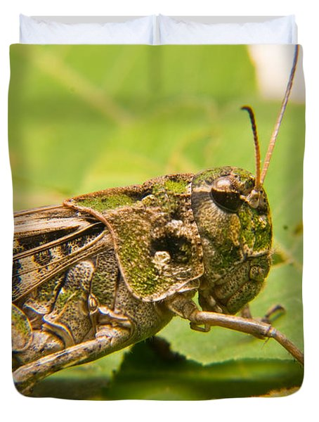 Hopper Face To Face Duvet Cover