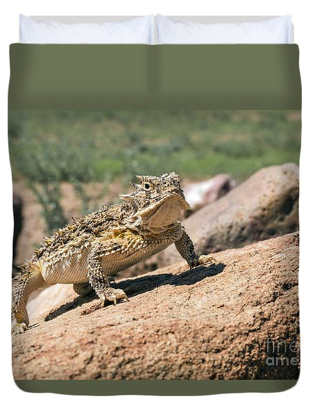Horny Toad Duvet Cover