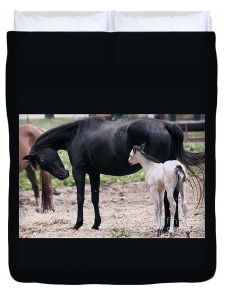 Horse And Colt Duvet Cover
