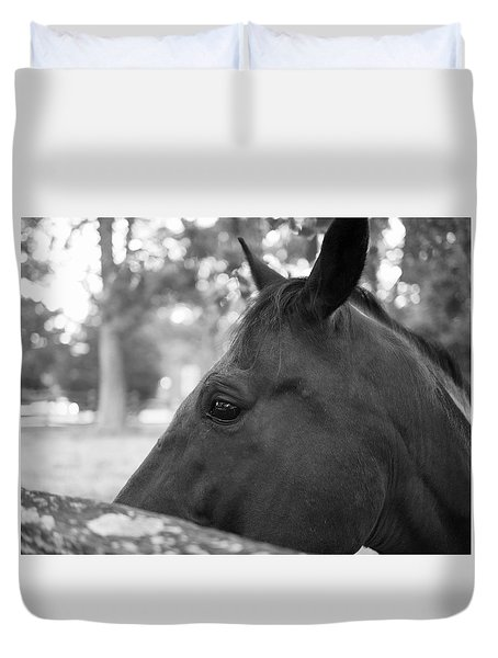 Horse At Fence Duvet Cover