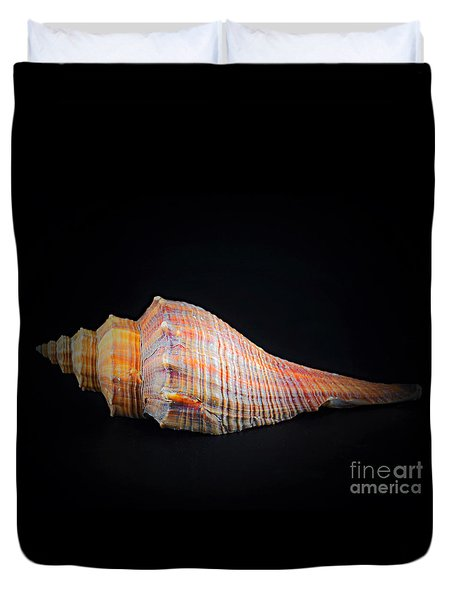 Horse Conch Duvet Cover by Ray Shrewsberry
