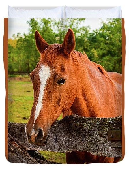 Horse Friends Duvet Cover